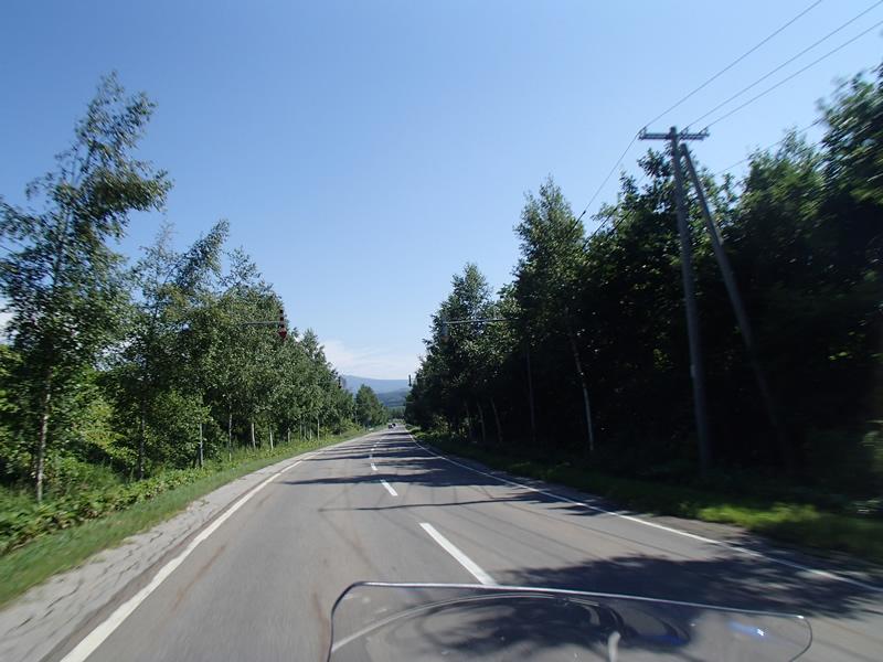P8140280.jpg