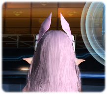 pso2-4.png