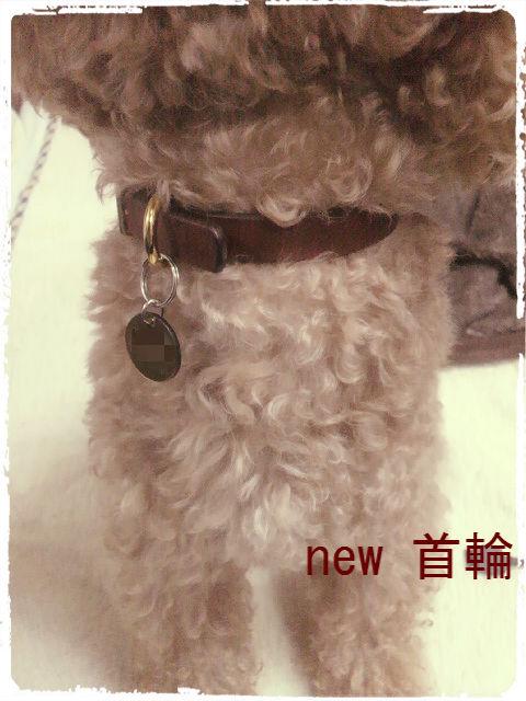 new首輪2