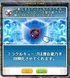 20130320 (10)
