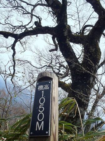 三瓶山 022-001