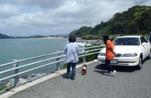 佐賀県 呼子 006-001