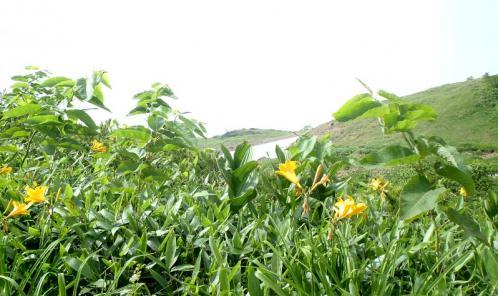 唐松岳~五竜岳~美ヶ原~霧が峰~蓼科山 045-001