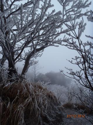 雲仙(普賢岳) 058