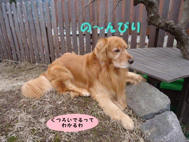 004_20130325212151.jpg