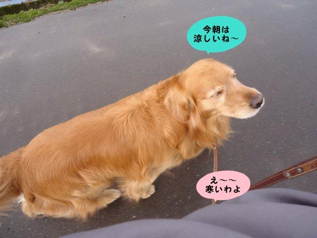 004_20130410181047.jpg