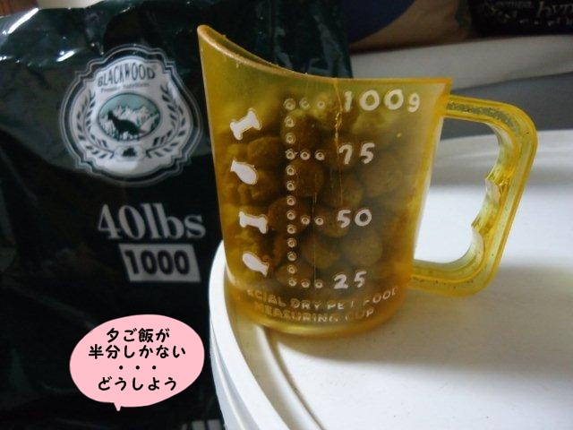 002 (2)
