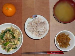 胚芽押麦入り五穀米,玉子とニラともやしのにんにく醤油炒め,キンピラゴボウ,玉ねぎのみそ汁,みかん