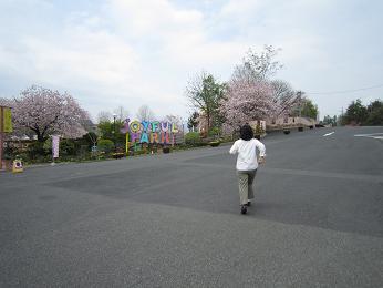 2011-001.jpg