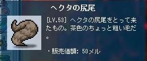 Maple121008_090940.jpg