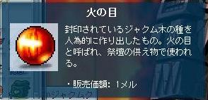 Maple121008_092426.jpg