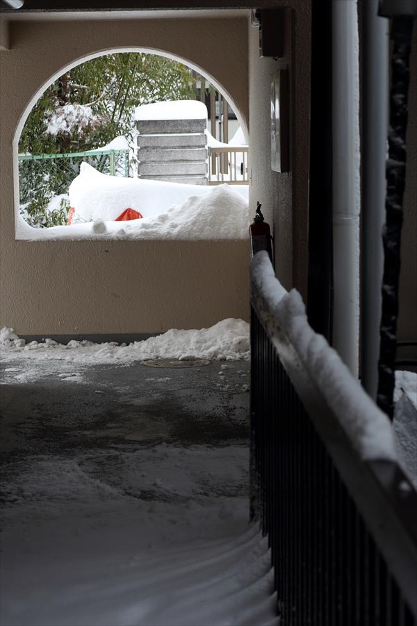 仙台大雪01