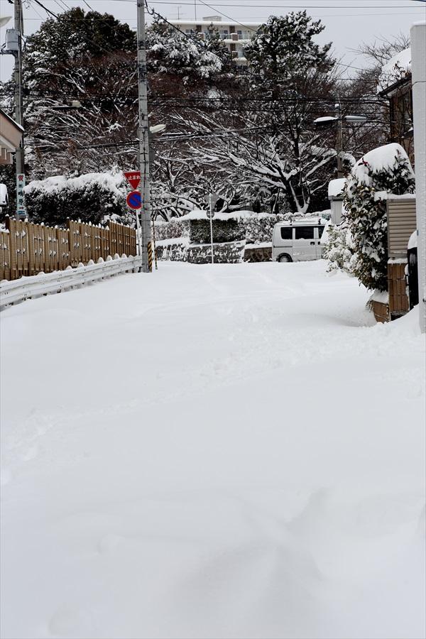 仙台大雪02