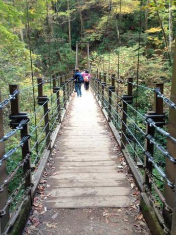 4号路吊り橋