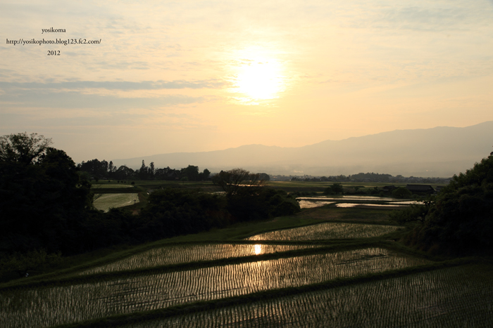 棚田夕陽1