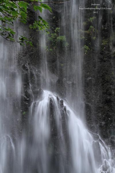 善五郎滝4
