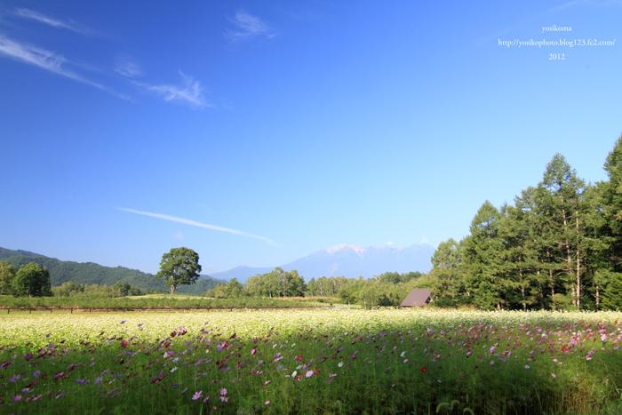 開田高原1