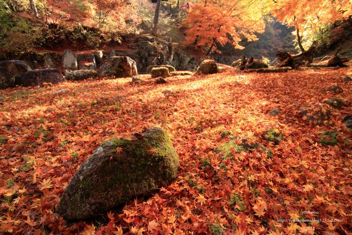 姫宮神社6