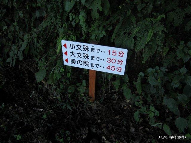 IMG_3573.jpg