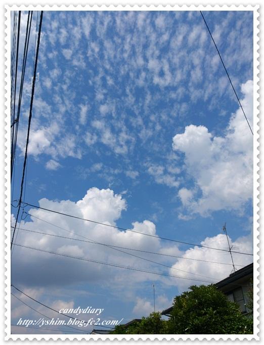 DSC_0375.jpg