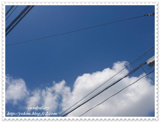 DSC_0398-002.jpg