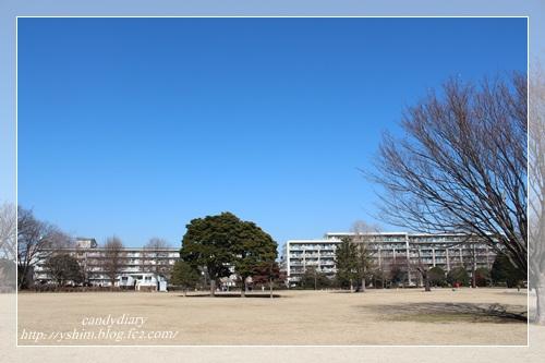 IMG_7808-001.jpg