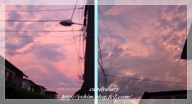 cats_20120718141352.jpg