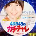 AKB48のガチチャレ(DVDver.2)