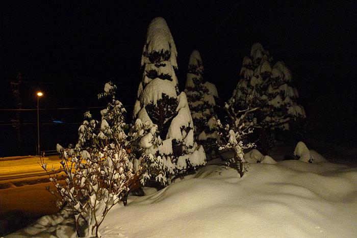 2014 大雪 0208