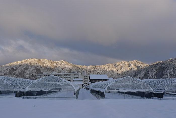 ひだ高山 雪景色 20140209