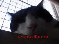 03_20120924114534.jpg