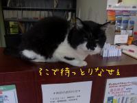 03_20121210143326.jpg