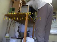 05_20121226132911.jpg