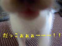 06_20120924114532.jpg