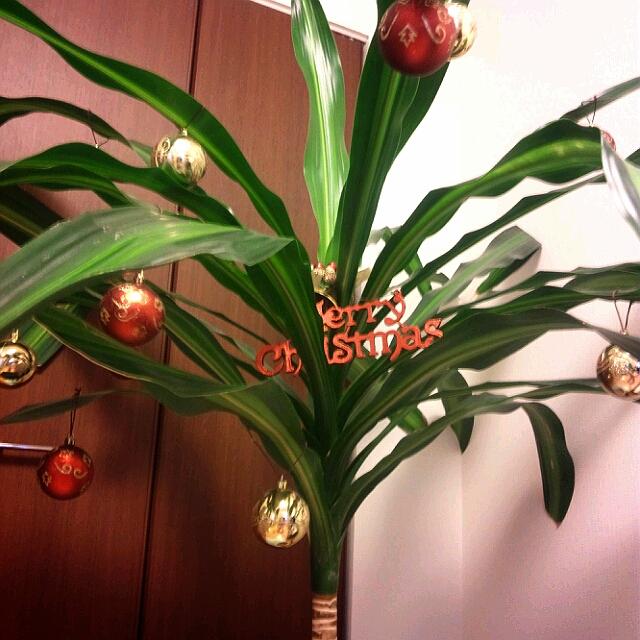 クリスマス2012-7