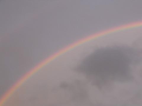 世にもを思い出す虹