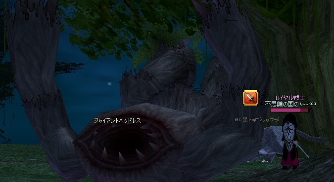 2_20121108190136.jpg
