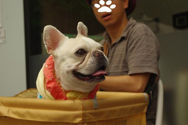 ジョーカー横浜1