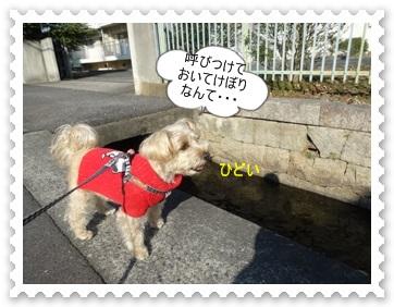 DSC03914_20140118001625aa6.jpg