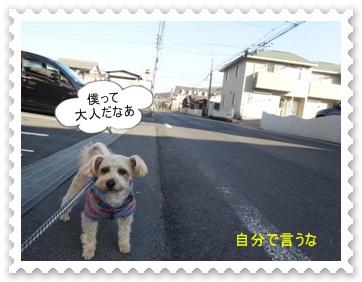 DSC03980.jpg