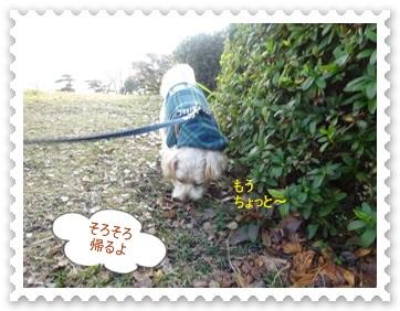 DSC04463_20140203000857efa.jpg