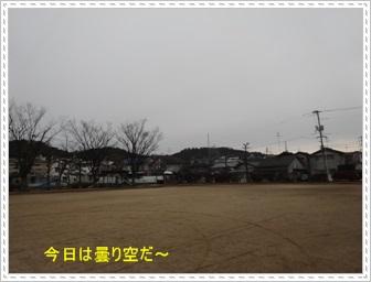 DSC04755_20140210235510d09.jpg