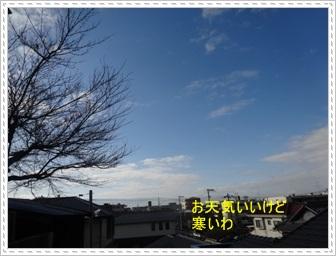 DSC04787.jpg