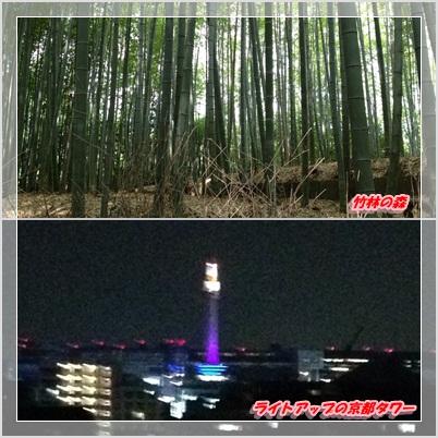 タワーと竹林