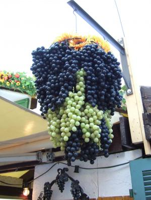 ワイン村1