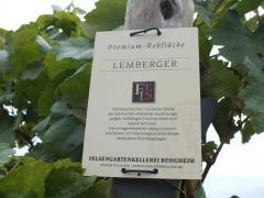 レムベルガー1