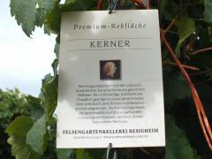 ケルナー1