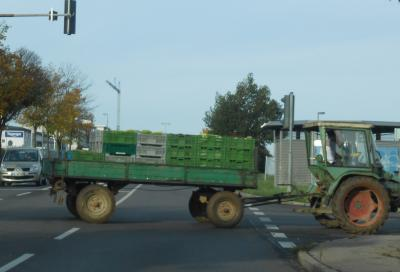 キャベツトラック2