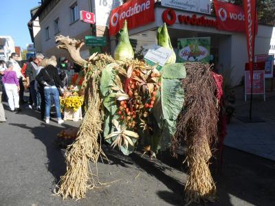 キャベツ祭り5