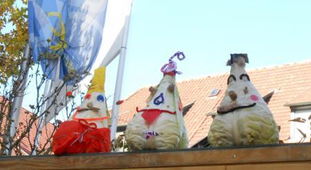 キャベツ祭り8